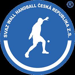 Wall Handball